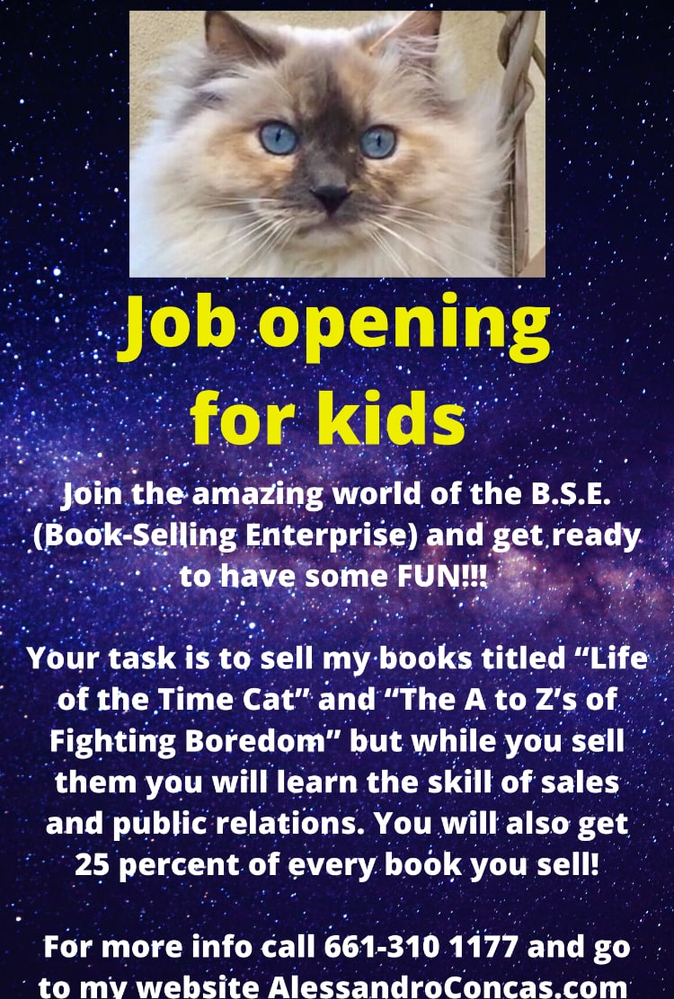 Alessandro B.S.E. Opportunity for Kids